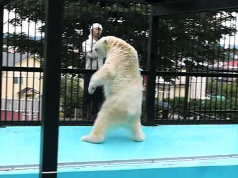 2010年7月18日おびひろ動物園キロル