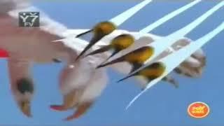 Trailer : Power Ranger Will Force ( 5 Anh Em Siêu Nhân Gao )