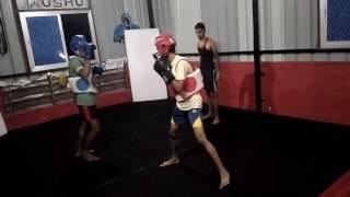 Wushu fight practice