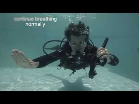 Neutrally Buoyant - PADI Divemaster & Instructor Course (PADI IDC) Skills circuit