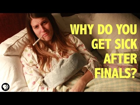 Why Do You Always Get Sick After Final Exams?