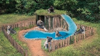 Survival Builder: Rescues Wilde Puppies On Hold Build House And Pool