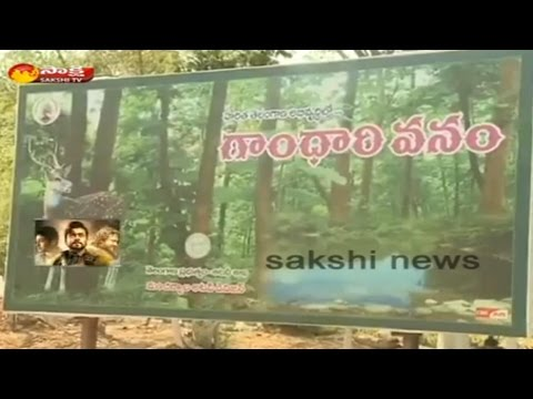 Gandari Vanam: Telangana CM KCR Develop Adilabad Forest Area as a Tourist Destiny