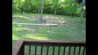 GUEST CABIN AND PROPERTY TOUR - 422 Russ Road, Norfork, AR