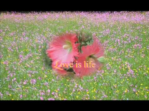 Maharishi quot:Impulse of love, Sleep in the blessing of God.mov