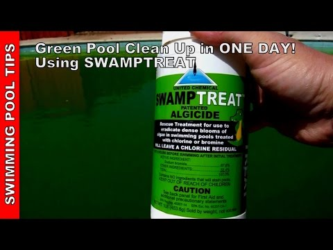 Green Pool Clean Up in One Day Using