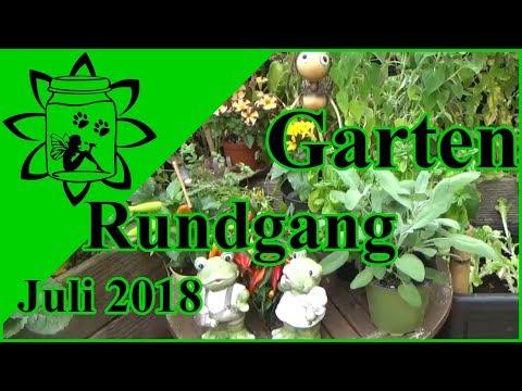 Garten Rundgang Juli 2018 | Gemüse Garten im Juli | Hitzewelle und Dürre