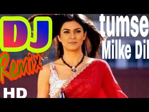 Tumse milke dil ka jo hai hal kya kahe | Dj remix song | (Mai hoon na) ...by Parwez