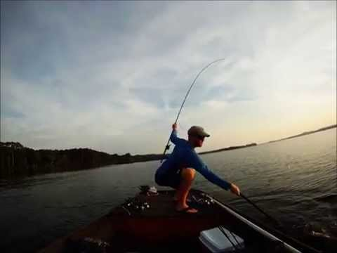 8 Pound Bass Lake Guntersville Bass Fishing