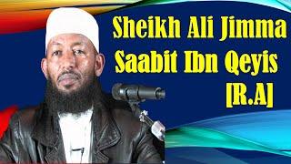 Saabit Ibn Qeyis r.a ~ Sheikh Ali Jimmaa
