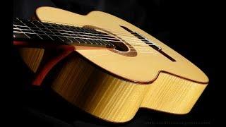 2017 Douglass Scott Classical Guitar for Sale