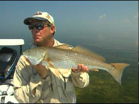 Addictive Fishing: Destination North Florida - REDFISH from both coasts