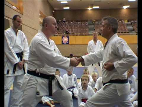 TOM HILLS DOJO - GOJU RYU - ZEN KUTSU DACHI FIGHTING STANCE TESTING Image 1
