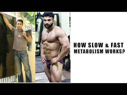 How Slow & Fast METABOLISM works? Details explanation by panghal fitness