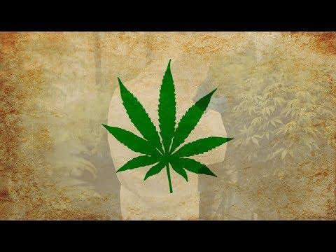 Warum Cannabis legalisiert werden soll!