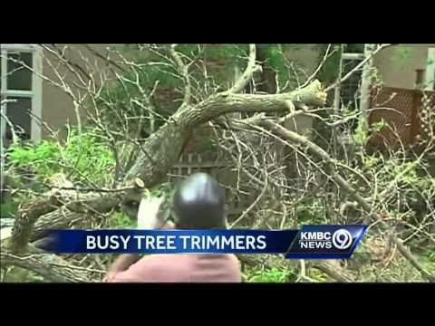 Tree-trimming companies stay busy after storms