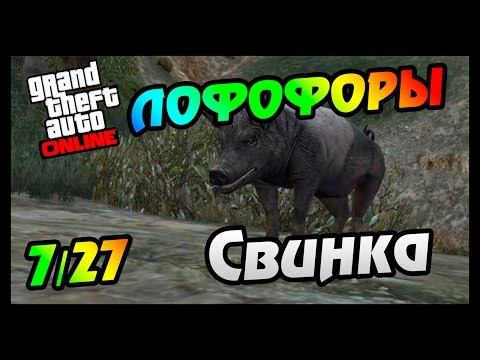GTA 5 PS4 ЛОФОФОРЫ - СВИНКА (+Карта)(7/27)