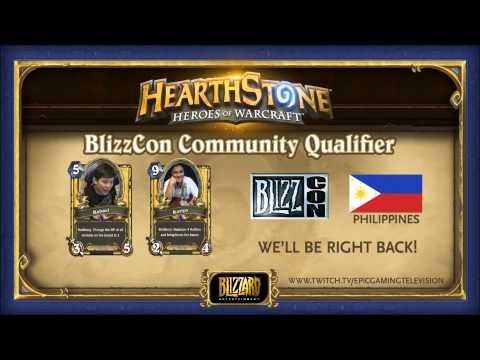 BlizzCon Community Qualifier - Philippines : AkisS vs Beefsteak