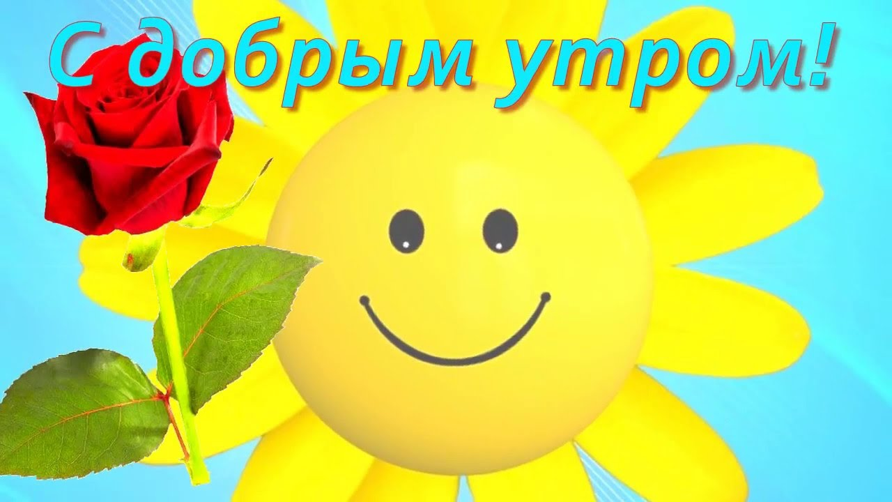 Веселые Музыкальные Поздравления С Добрым Утром