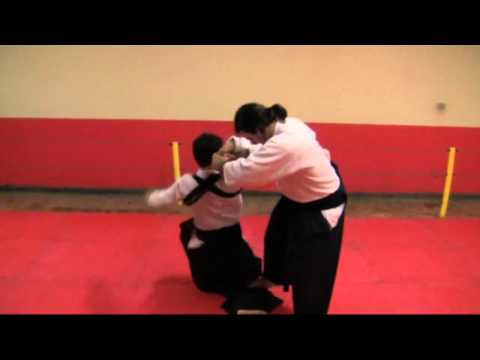 Ogawa Ryu Aikijujutsu - october training moments in Brazil Image 1
