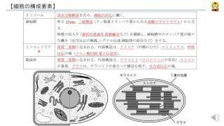 細胞の構成要素