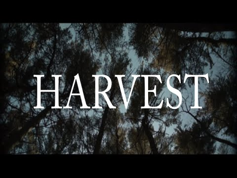 """Harvest"" ESRA New York"