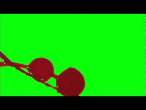 Blood Squirt Splatter Free Hd Fx (green Screen) & In Use Samples video