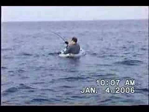 100 Pound Sailfish Tows kayak hooked: monster fish! fly flshing