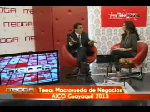 Macrorueda de negocios AICO Guayaquil 2013