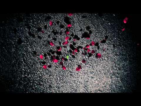 Rose Petals Faling video