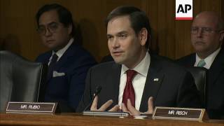 Rubio Questions Tillerson on Human Rights