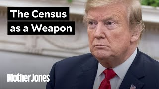 Trump's Plan to Rig the 2020 Census, Explained