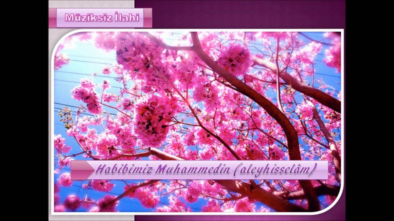Habibimiz Muhammedin (aleyhisselam) [Müziksiz İlahi]