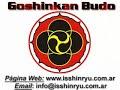 Isshinryu Karate & Kobudo Image 2