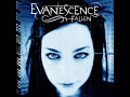 Evanescence-My Immortal (with lyrics)