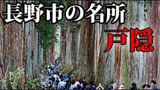 長野市の人気スポット・戸隠神社に行ってきた【戸隠そば・杉並木・アクセス方法など紹介】