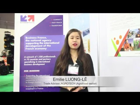 Ms. Emilie's interview from Business France