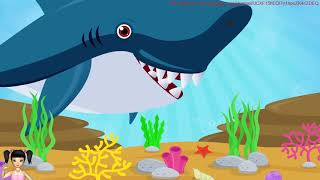 ChiChi ToysReview TV - Hoạt hình đi câu cá và gặp phải hải tặc