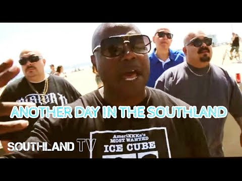 Another Day In The Southland (feat. Cold 187um, Malow Mac, Ese Saint, Hillside, Ese Bobby, Mister D)