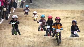 Tackebike xe cân bằng  xe thăng bằng  xe cho bé xe  đạp cho bé  Tacke Cam