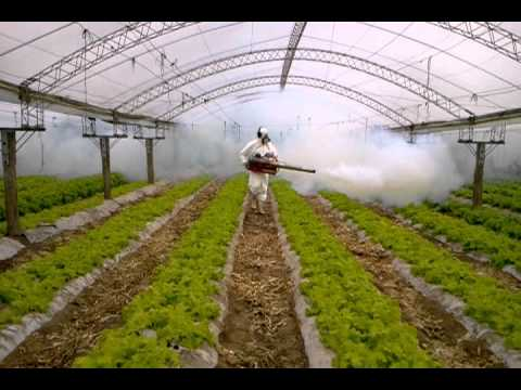 video de PULS FOG en Horticultura
