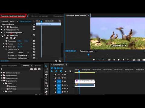 Как сделать стоп кадр в adobe premiere pro cc - Приоритет