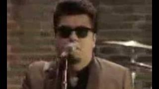 Watch Los Lobos Set Me Free rosa Lee video