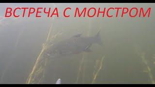 подводная охота на жереха