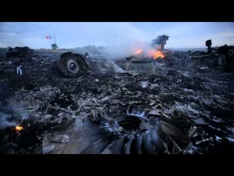 Malaysia Airlines MH17 Plane Shot Down by Missile in Ukraine