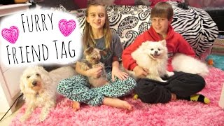 FURRY FRIEND TAG ~ CUTEST DOGS EVER!!