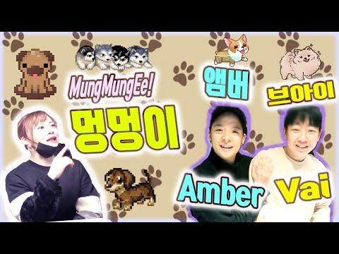 """에리나 '멍멍이' 발음 연습 + 브아이와 앰버의 깜짝 만남 ㅋㅋㅋ Erina tries to pronounce """"Puppy"""" and Amber surprises Vai"""