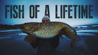 The Fish Of A Lifetime - Small Fish Stories