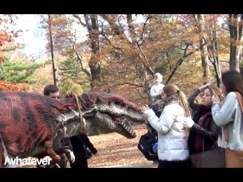 Paseando con mi dinosaurio mascota | Un dinosaurio de mascota | Video Gracioso