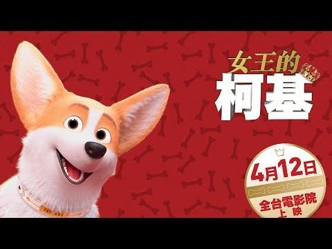 4月12日【女王的柯基】15s奔跑版電影預告
